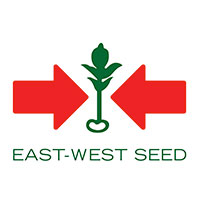 East West Seed Philippines