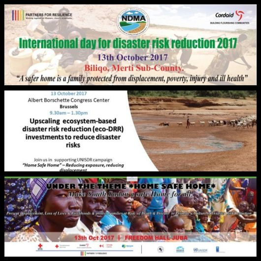 PfR at DRR Day 2017